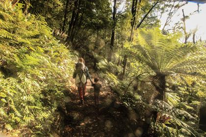 walking tramping hiking with a preschooler nz