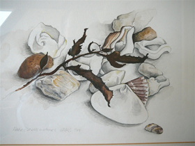 watercolour painting of shells, stones and sea-weed - Hahei Beach N.Z.