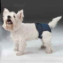 Wee Wee Washable Dog Diapers