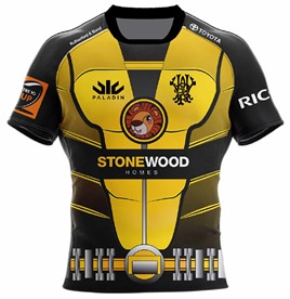 Wellington Lions Charity Shirt