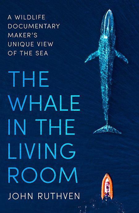 Whale in the Living Room