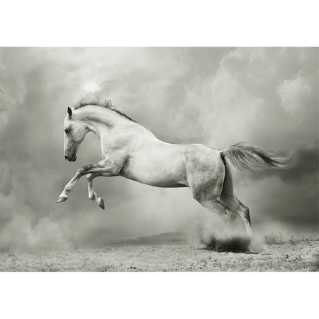White Horse Decoupage Paper by Mint