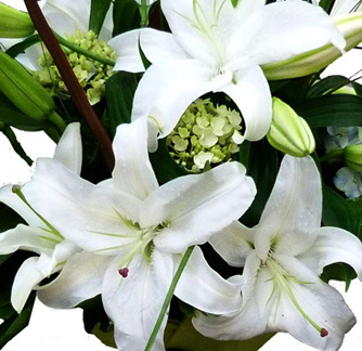 Lily (perfumed) Bouquet