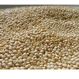 White Quinoa 3 kg