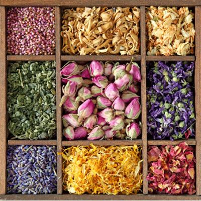 wholesale herbs