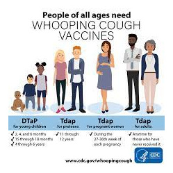 Whooping Cough, Tetanus, Diphtheria Vaccination Bookings