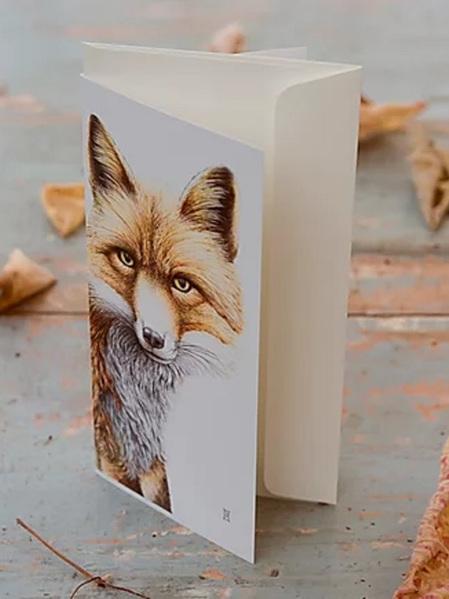 Wild Grey Fox - Nikki McIvor