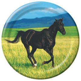 Wild Horse Lunch Plates x 8