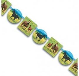 Wild Horse Party Range