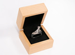 Wilshi Shell Proposal Ring in natural wooden box