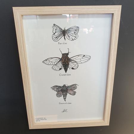 Wings A4 Print Framed