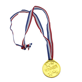 Winners Medals x 5