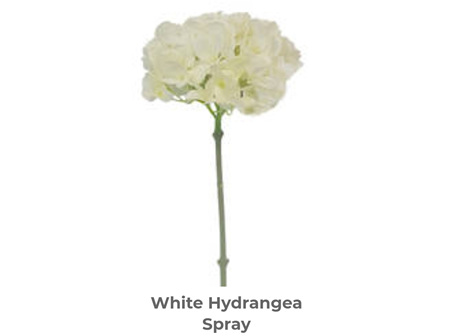 Winter Hydrangea White 48cm
