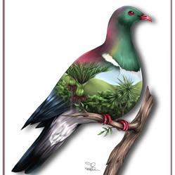 Wood Pigeon - Card