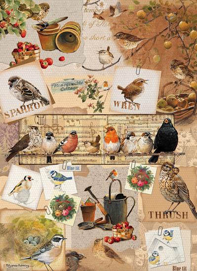 Otter House 1000 Piece Jigsaw Puzzle: Garden Birds