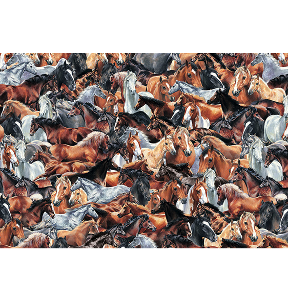www.puzzlesnz.co.nz has Otter House 1000 piece puzzle impossibles Horses