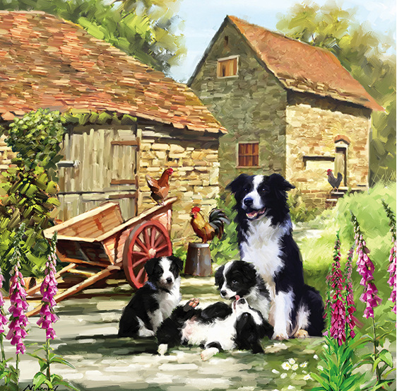 www.puzzlesnz.co.nz has Otter House 1000 piece puzzle Border Collie Barn