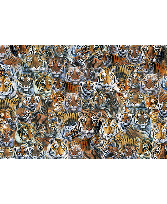 www.puzzlesnz.co.nz has Otter House 1000 piece puzzle impossibles Tigers