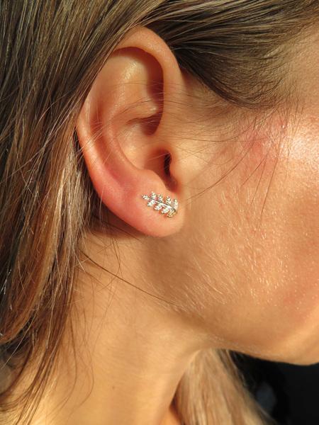 X11 Curled silver fern stud earrings