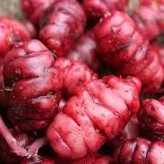 Yams Red Organic Approx 100g