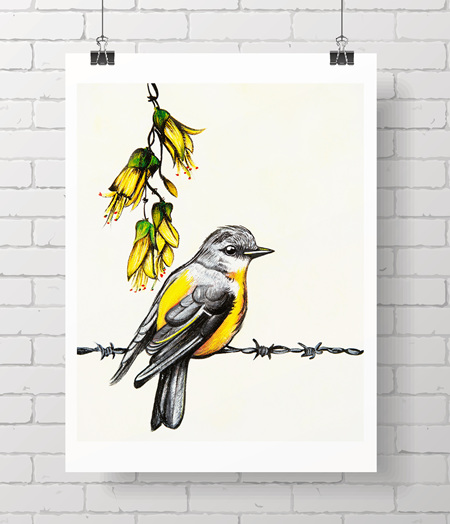 yellow bird and kowhai
