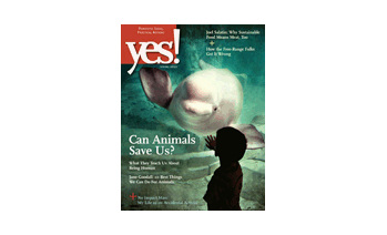 Yes! Issue 57 Spring 2011 Animals