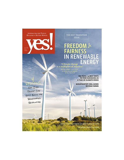 Yes! Issue 83, Freedom & Fairness in Renewable Energy