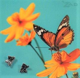 Zad Earrings - Little Butterflies