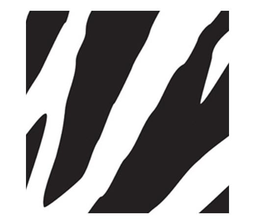 Zebra Print Beverage Napkins x 16